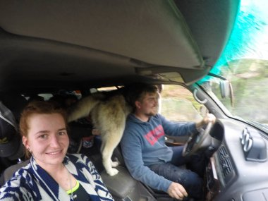 A man and a woman in a car with a dog. Offroad on cars in the fo