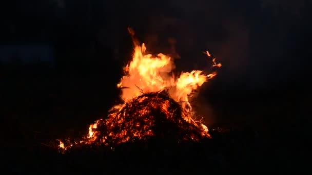 textúra a tűz. a tűz egy nagy láng. Közelkép máglya