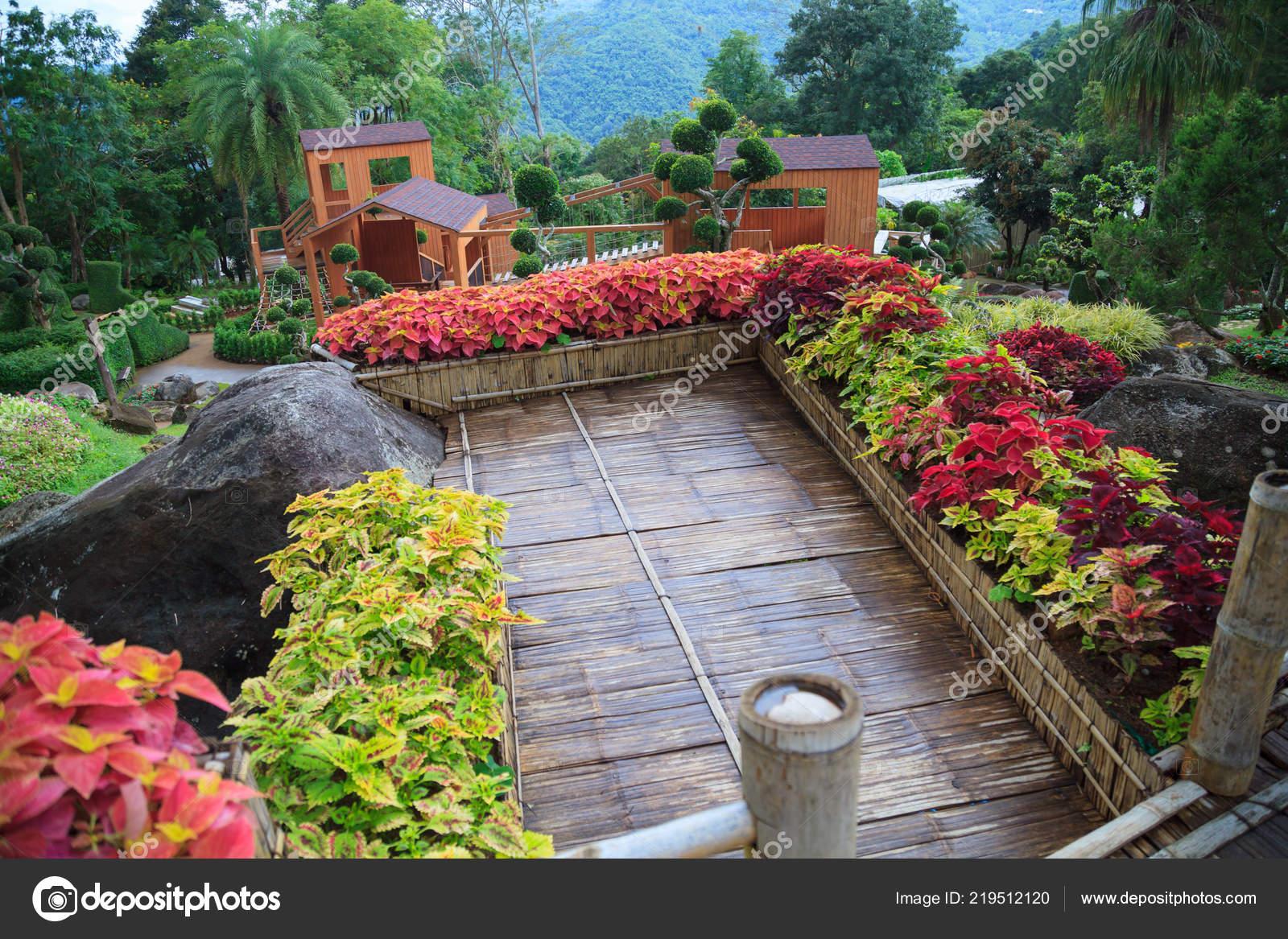 Terraza Casa Bambú
