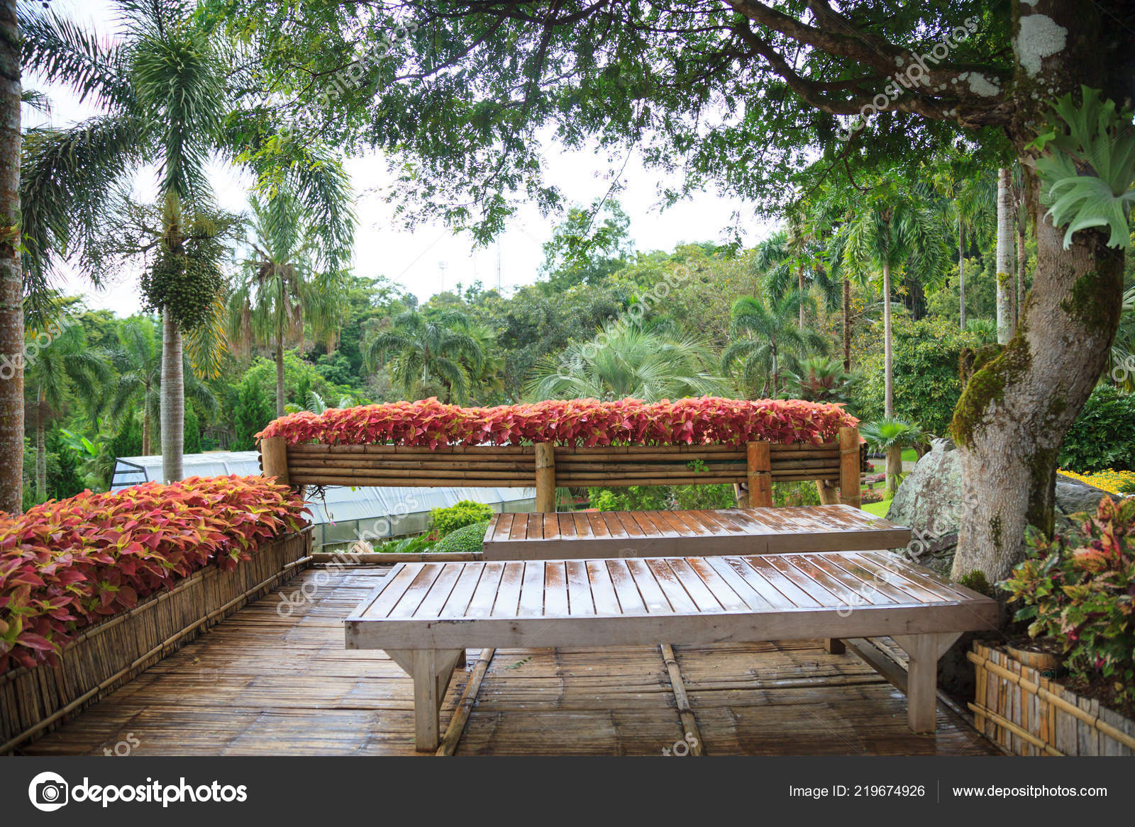 Gîte Rural Tropical Maison Jardin Bambou Bois Sur Balcon Terrasse ...