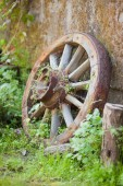 old wooden vintage wheel from the cart stands in the grass