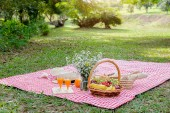 Klobouk, květina a piknik proutěný koš s potraviny, chléb, ovoce a oranžovou šťávu na červené a bílé kontrolované látky v poli s pozadím zelené přírody. Koncept piknik.
