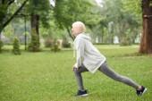 Fotografie Senior-Sportlerin trainieren und dabei stürzt sich auf Rasen im park