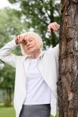 Fotografie senior tired woman resting near tree in park