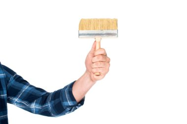 cropped shot of man holding paint brush isolated on white background