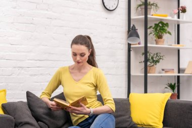 concentrated adult woman reading book on couch at home