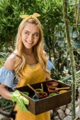 Fotografie beautiful smiling woman holding box with flower pots and looking away in greenhouse