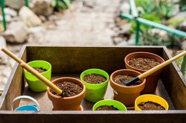 close-up view of box with flower pots, soil and gardening tools