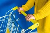Vágott nézet nő a gazdaság kosár kék alapon sárga ruhák