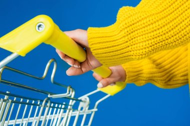 Cropped view of female hands on shopping cart handle isolated on blue background