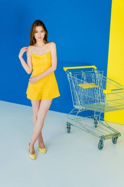Beautiful brunette girl standing by shopping cart on blue and yellow background stock vector