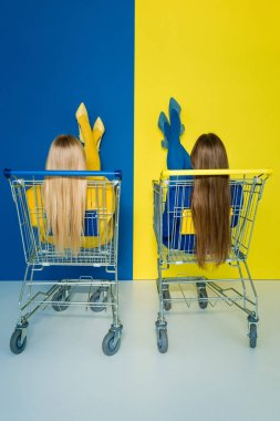 Rear view of female fashion models sitting in shopping carts on blue and yellow background