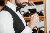 Fotografie oříznuté záběr sommelier zkoumání vůně vína ze skla ve vinotéce
