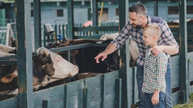 side view of happy father and son in checkered shirts looking at cows in stall