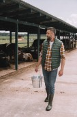 handsome male farmer holding bucket and looking at cows in cowshed