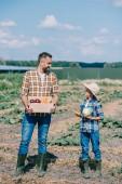 Fotografie Šťastný otec a syn drží zralé zeleniny a usmívá se navzájem v poli