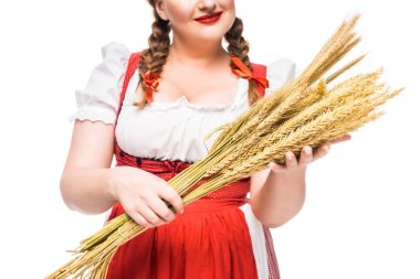 cropped image of oktoberfest waitress in traditional bavarian dress holding wheat ears isolated on white background
