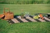 Fotografie piknik s proutěný koš, bílé víno, ovoce a akustickou kytaru na dece na zeleném trávníku
