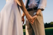 Fotografia ritagliata colpo di sposi giovane romantico che tengono le mani nel parco