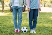 Fotografie Oříznout obrázek africké americké pár stojící poblíž fotbalový míč v parku