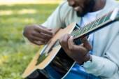 Fotografia immagine potata di uomo afroamericano che gioca chitarra acustica nel parco