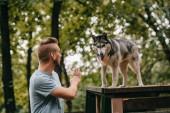 cynologist intett parancs akadály a kutyaszán