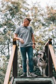 Photo dog trainer with siberian husky standing on stairs
