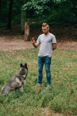 Photo cynologist and husky dog training sit command with hand gesture