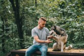 Photo handsome man holding paw of obedient siberian husky dog