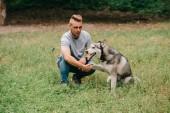 cynologist játszó szibériai husky kutya Park