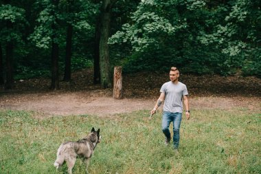 young man and husky dog playing with stick in park