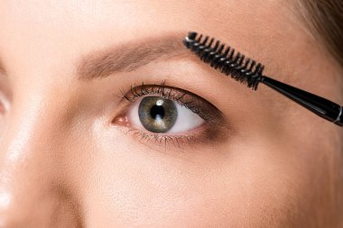 Cropped shot of woman with makeup brush for eyebrows stock vector