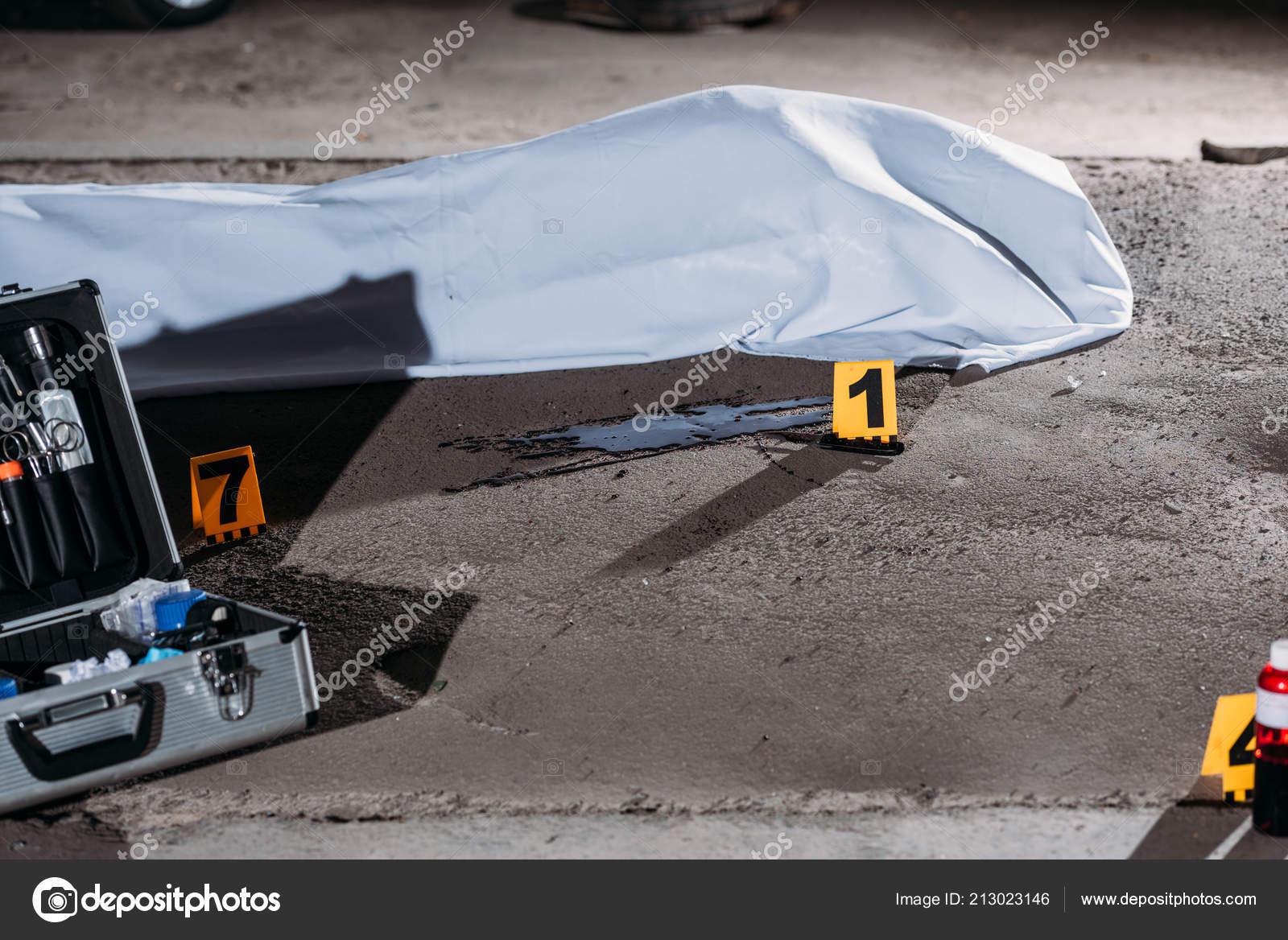 Close View Corpse Body Bag Case Investigation Tools Crime