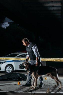 policeman holding german shepherd on leash near cross line at crime scene with corpse in body bag