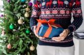Fotografie oříznutý pohled člověka v vánoční svetr s dárek vánoční strom