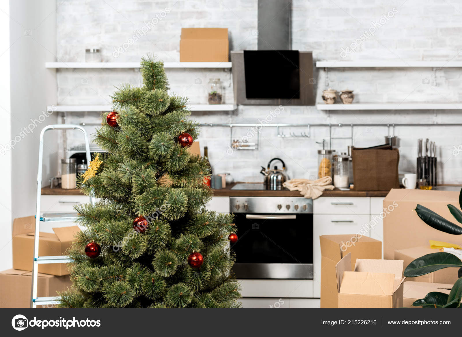 Interior Kitchen Decorated Christmas Tree Cardboard Boxes Relocation