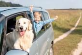 šťastné dítě jezdecké autíčku se psem zlatý retrívr v poli