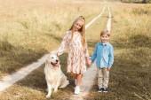 Fotografie entzückende kleine Kinder stehen auf der Straße im Feld mit golden retriever