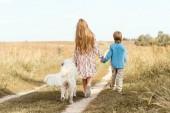 Fotografie rear view little kids walking by road in field with golden retriever