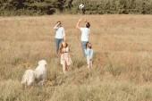 Fotografie krásná mladá rodina s pes retrívr spolu hrají v poli