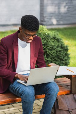 african american young freelancer using laptop on bench