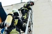 Selektivní fokus hasičů v ohnivzdorné jednotné postavení na žebříčku