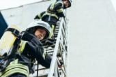 nízký úhel pohledu hasičů v přilbách, stojící na žebříku a při pohledu na fotoaparát