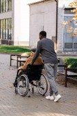 rear view of senior disabled man in wheelchair and nurse riding on street