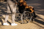 cropped shot of disabled man in wheelchair and nurse riding on street