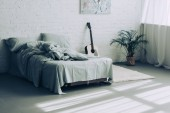 Photo interior of modern bedroom with guitar and houseplant