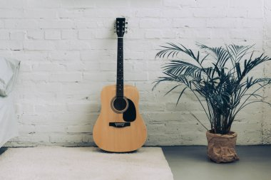 selective focus of white carpet, acoustic guitar and houseplant at home