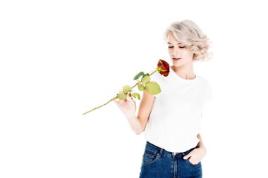 Wonderful young adult woman smelling red rose isolated on white