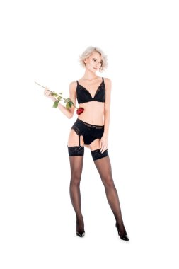 Amazing blonde woman in lingerie and stockings holding beautiful red rose isolated on white