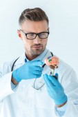 Fotografie selective focus of handsome doctor pointing on brain model isolated on white